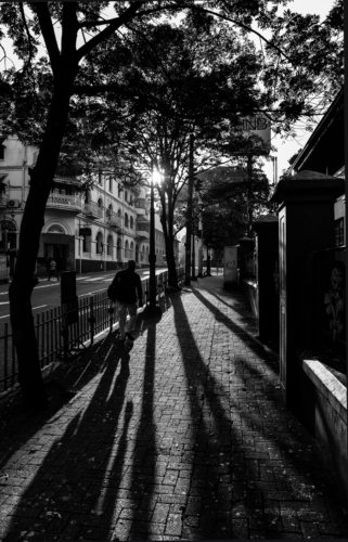 10 points-Shadows-Fonny de Fonseka