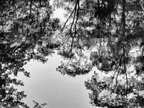 10 points-ABSTRACT REFLECTION-Arulramalingam