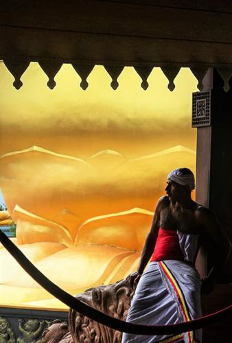11 points-Rest for the While-Dharmavijaya Seneviratne