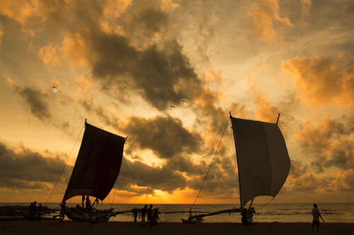 12 points-Sunset-Ajitha Edirimane