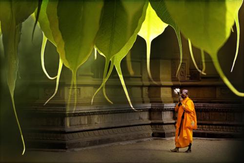 12 points-Namaskara-Dharmavijaya Senevirathne
