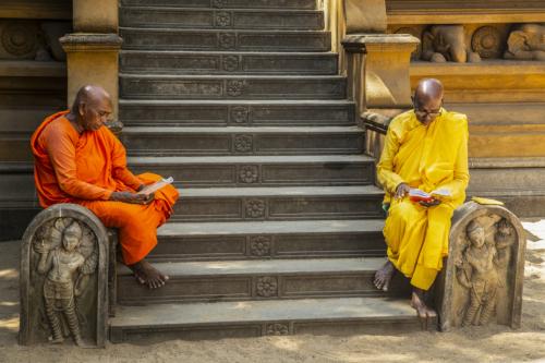 13 points-Towards Dhamma-Dhrmavijaya Seneviratne
