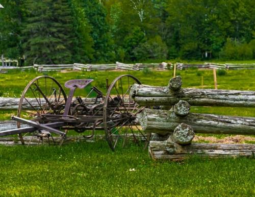 8 points-Antique Horse Cart-Mervyn Perera