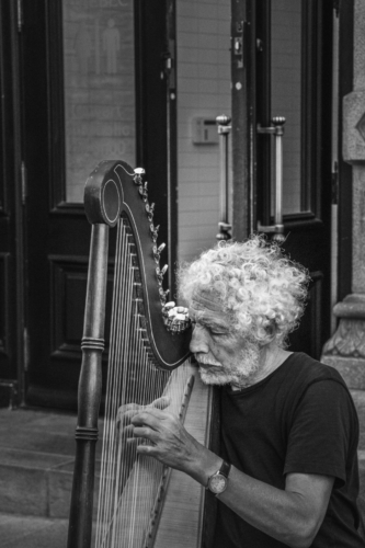 9 points-Harp Player-Mervyn Perera